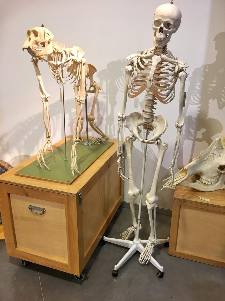 sciencemuseum